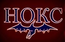 logo-noks