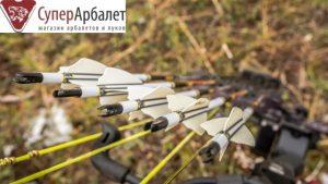 Лучные карбоновые стрелы