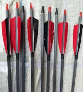 Стрела лучная карбоновая Junxing JX030T 1 500 (натуральное перо)